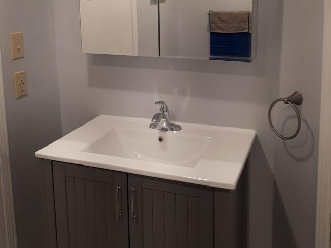 Replace Basement Bathroom